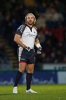 Andy Goode of Worcester Warriors made an impact after coming on as a substitute during the LV= Cup second round match between London Wasps and Worcester Warriors at Adams Park on Sunday 18th November 2012 (Photo by Rob Munro)