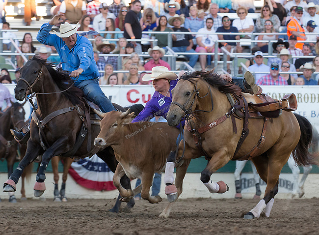 Heath Thomas competes in the Steer Wrestling event during the Reno Rodeo on Sunday, June 23, 2019.