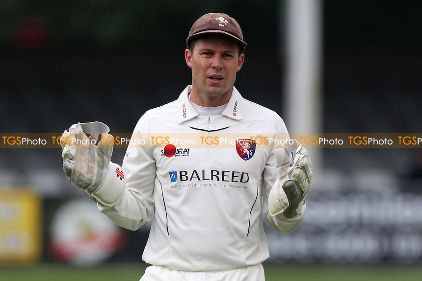 Geraint Jones of Kent - Essex CCC vs Kent CCC - Pre-Season Friendly Cricket Match at the Essex County Ground, Chelmsford - 03/04/14 - MANDATORY CREDIT: Gavin Ellis/TGSPHOTO - Self billing applies where appropriate - 0845 094 6026 - contact@tgsphoto.co.uk - NO UNPAID USE