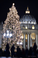 Christmas tree in St. Peter square at the Vatican.8 december 2017