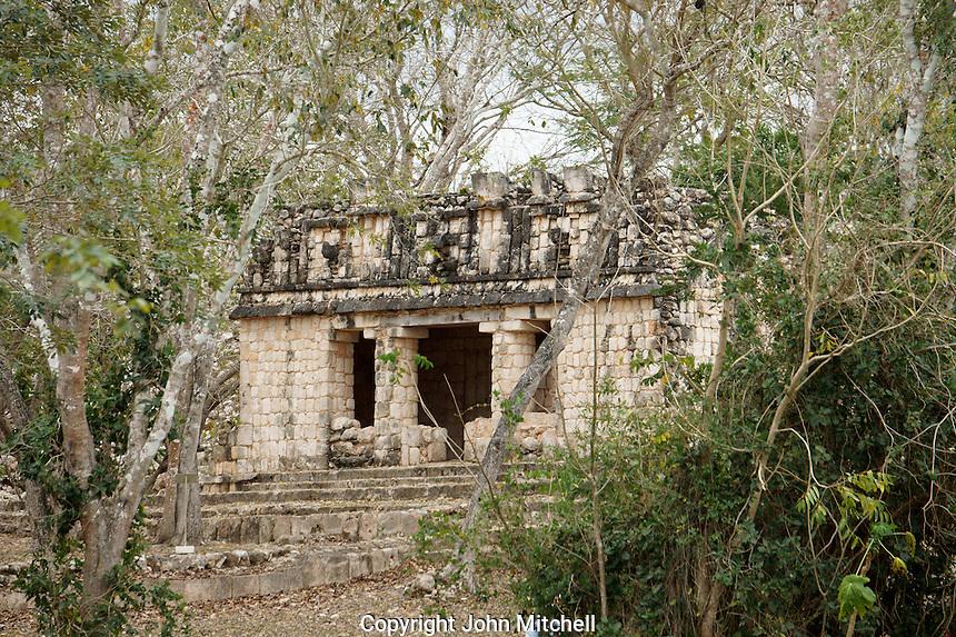 Small Mayan temple shrouded by jungle, Uxmal, Yucatan, Mexico.