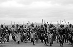 The Umhalanga dance, traditional annual celebration of the etnia Swazi. The young women dance before the king Mswati III of Swaziland, the last totalitary king of Africa..Danza Umhalanga, celebracion anual, tradicional de la etnia Swazi, en la que las mujeres jovenes bailan ante el Rey Mswati III, Swazilandia es la ultima monarquia totalitaria de Africa...