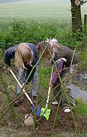 Schulgarten, Anlage eines Schmetterlingsgarten, Garten der Grundschule Nusse wird als Projektarbeit von einer 1. Klasse gestaltet, Kinder pflanzen Weidenzweige in die Erde, Gartenarbeit
