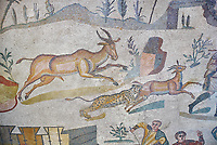 Ambulatory of the Great Hunt Roman mosaic, gazelle being caught by lion, room no 28, at the Villa Romana del Casale, first quarter of the 4th century AD. Sicily, Italy. A UNESCO World Heritage Site.<br /> <br /> The Great Hunt ambulatory is around 60 meters long (200 Roman feet) and connects the master&rsquo;s northern apartments with the triclinium in the south. The door in the centre of the the Great Hunt ambulatory leads to audience hall. <br /> <br /> The Great Hunt Roman mosaic depicts African animals being hunted and put onto ships to be taken to the Colosseum.