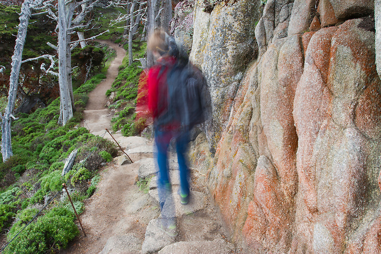 HIker in Point Lobos State Park