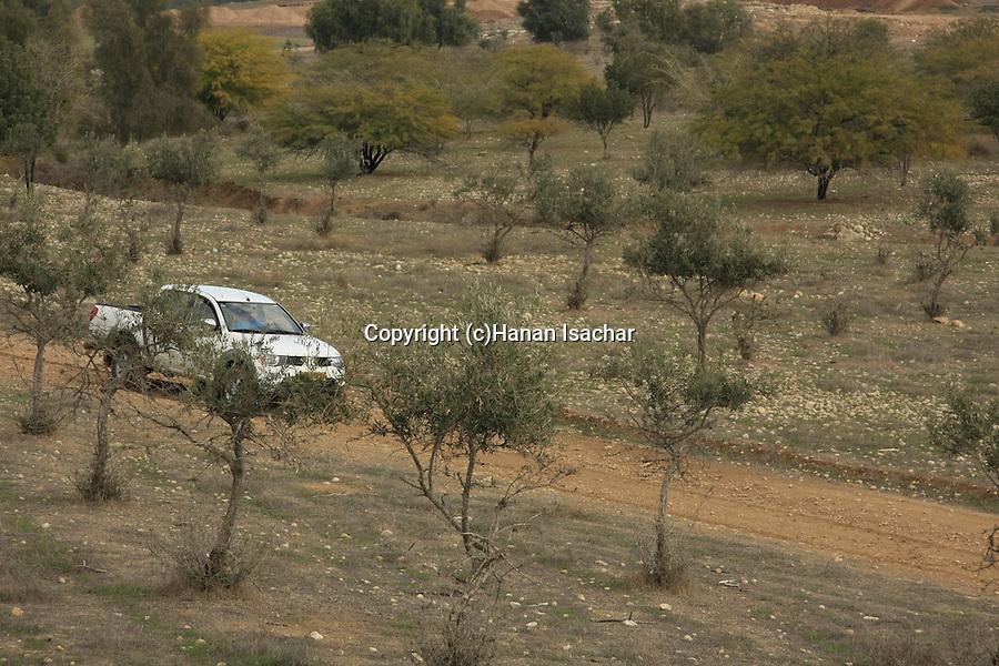 Israel, Shephelah, scenery by Road 358