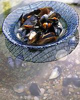 Europe/France/Bretagne/56/Morbihan : Moules à la crème  Recette d'Angelo Orilieri chef du Sofitel Thalassa
