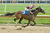 B For Beez winning at Delaware Park  on 9/03/11