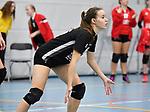 2017-11-04 / Volleybal / Seizoen 2017-2018 / Dames VC Geel / Caroline Van Esbroeck<br /> <br /> ,Foto: Mpics.be