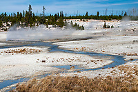 Steam rises from thermal activitiy as heated water run off at Yellowstone National Park, Wyoming