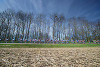 48th Amstel Gold Race 2013..peloton
