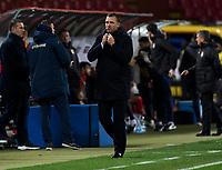 17th November 2019; Stadion Rajko Mitic, Belgrade, Serbia; European Championships 2020 Qualifier, Serbia versus Ukraine; Head Coach Andriy Shevchenko of Ukraine - Editorial Use