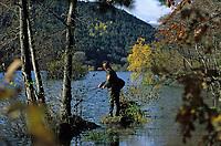 Europe/France/Auvergne/63/Puy-de-Dôme/Parc Régional des Volcans/Les Monts Dores: Pêcheur sur le lac Chambon