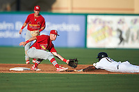 Palm Beach Cardinals shortstop Andrew Sohn (5) stretches for a throw as Jeremias Pineda (17) safely steals second with second baseman Dylan Tice (8) backing up the play during a game against the Jupiter Hammerheads on August 13, 2016 at Roger Dean Stadium in Jupiter, Florida.  Jupiter defeated Palm Beach 6-2.  (Mike Janes/Four Seam Images)