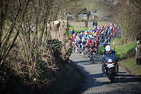 peloton led by Jurgen Roelandts (BEL/Lotto-Soudal) up the Oude Kwaremont<br /> <br /> Kuurne-Brussel-Kuurne 2016