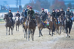 November 1, 2018:Horses train on the track at Churchill Downs on November 1, 2018 in Louisville, Kentucky. Jamey Price/Eclipse Sportswire/CSM