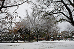 Snow after winter storm Nor'easter in Jersey City. Just after the city was hit by Hurricane Sandy it now has to cope with the stormy winter weather of a Nor'easter. United States. 08/11/2012. Photo by Kena Betancur/VIEWpress.