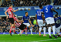 Lincoln City's Michael Bostwick scores his side's first goal<br /> <br /> Photographer Chris Vaughan/CameraSport<br /> <br /> Emirates FA Cup Third Round - Everton v Lincoln City - Saturday 5th January 2019 - Goodison Park - Liverpool<br />  <br /> World Copyright &copy; 2019 CameraSport. All rights reserved. 43 Linden Ave. Countesthorpe. Leicester. England. LE8 5PG - Tel: +44 (0) 116 277 4147 - admin@camerasport.com - www.camerasport.com