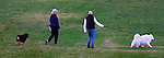 A couple walk their dogs in Crissy Field in San Francisco, California.