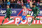 Fernando Torres (c) of Atletico de Madrid in action during their La Liga 2016-17 match between Atletico de Madrid vs Real Betis Balompie at the Vicente Calderon Stadium on 14 January 2017 in Madrid, Spain. Photo by Diego Gonzalez Souto / Power Sport Images