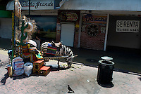 A donkey painted as a  zebra on Ave. RevoluciónTour bus Tijuana. Press toy around Baja California Norte