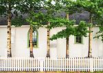 Atlin, church, poplar trees
