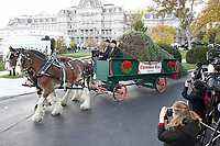 The White House Christmas tree is carried to the North Portico of the White House in Washington, DC where it will be accepted by first lady Melania Trump and son Barron on Monday, November 20, 2017.  The tree will stand in the Blue Room.<br /> Credit: Ron Sachs / CNP /MediaPunch /NortePhoto.com