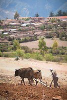 View of agricultural land being ploughed, Sacred Valley of the Incas, Cusco Region, Peru, South America