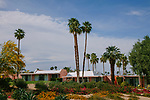 The unique pink buildings of the Marrakesh neighborhood were built in the 1960s and 1970s in Palm Desert, California April 6, 2017.  <br /> CREDIT: Brinson+Banks