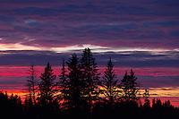 Sunset at Riding Mountain Nature Reserve