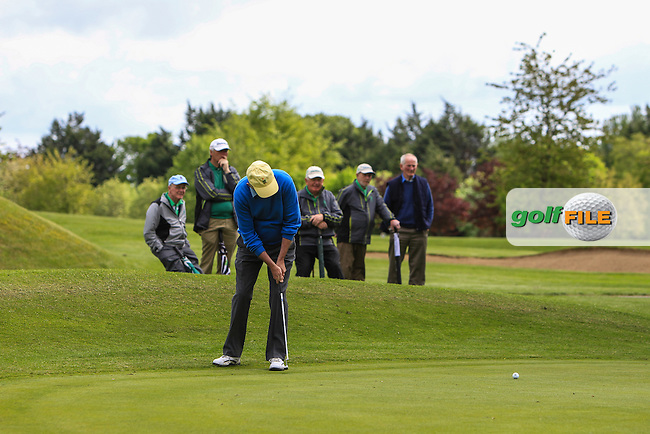 Tom Cleary (Cork) on the 6th green during Round 3 of the Irish Seniors Amateur Open Championship at Ardee Golf Club on Friday 20th May 2016.<br /> Picture:  Thos Caffrey / www.golffile.ie