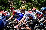 The peloton including White Jersey Giulio Ciccone (ITA) Trek-Segafredo in action during Stage 10 of the 2019 Tour de France running 217.5km from Saint-Flour to Albi, France. 15th July 2019.<br /> Picture: ASO/Pauline Ballet | Cyclefile<br /> All photos usage must carry mandatory copyright credit (© Cyclefile | ASO/Pauline Ballet)
