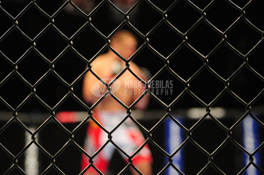 Oct. 29, 2011; Las Vegas, NV, USA; Detailed view of the chain link fence of the octagon ring during UFC 137 at the Mandalay Bay event center. Mandatory Credit: Mark J. Rebilas-