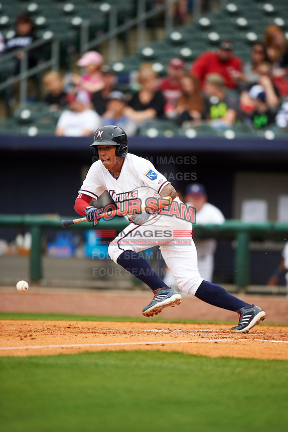 NW Arkansas shortstop Raul Mondesi (2) lays down a bunt base hit during a game against the San Antonio Missions on May 30, 2015 at Arvest Ballpark in Springdale, Arkansas.  San Antonio defeated NW Arkansas 5-1.  (Mike Janes/Four Seam Images)