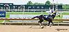 Mister Dish winning at Delaware Park on 8/8/13