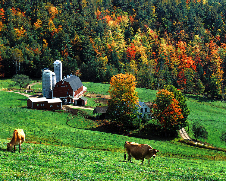 Farm scene at West Barnet, VT