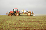 Red tractor spraying hillside field arable crop overcast sky, Suffolk, England, UK