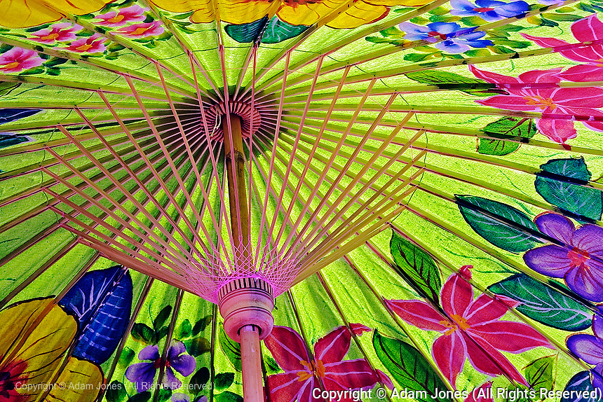 Underside details of decorative hand painted umbrella drying after painting, Bo Sang, near Chiang Mai, Thailand