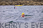 Alan 'Scully' O'Sullivan on the first leg of the round Beginish swim on Saturday.