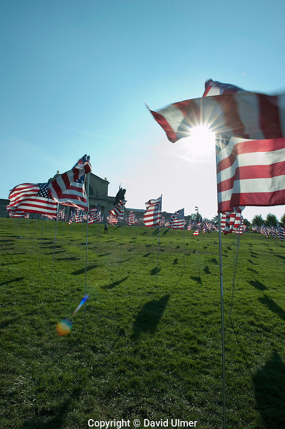 Nearly three thousand American flags placed on Art Hill in front of the St. Louis Art Museum in Forest Park, St. Louis, MO