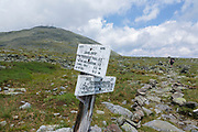 Trail sign along Davis Path in Sargent's Purchase in the Presidential Range in the New Hampshire White Mountains on a cloudy summer day. Completed in 1845 by Nathaniel T. Davis, Davis Path was the third and longest bridle path built to the summit of Mount Washington. The path was in use until 1853-1854, and then it was neglected and became unusable. In 1910 it was reopened as a footpath.