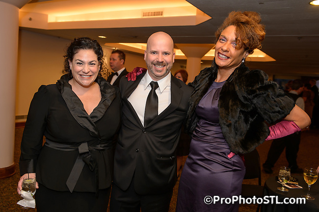 Grand Center, Inc. Gala at The Sheldon in St. Louis, MO on Oct 13, 2012.