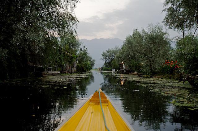 Dawn on Dal Lake, Srinigar, Kashmir