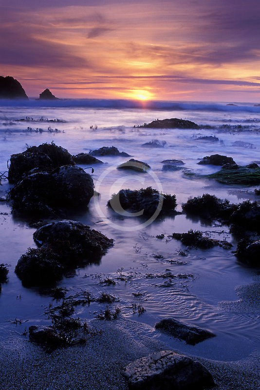 California, Bodega Bay, Sunset, Miwok Beach, Sonoma Coast Beach State Park
