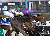 J. J's Lucky Train (3) edges Vengeful Wildcat in the Bay Shore at Aqueduct on Saturday.