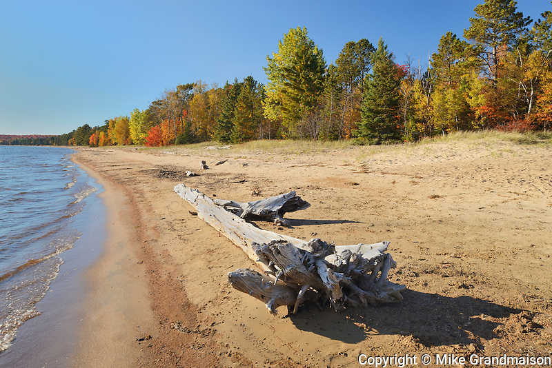 Driftwood on sandy shoreline of Lake Superior<br /> Batchawana Bay Provincial Park<br /> Ontario<br /> Canada