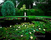 Tom Mackie, FLOWERS, photos, Garden Lily Pond, Knightshayes Court, Devon, England, GBTM913479-1,#F# Garten, jardín