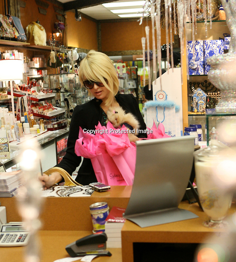 ..AbilityFilms@yahoo.com  805-427-3519.www.AbilityFilms.com.12-2-07 Paris Hilton Shopping with her new puppy dog at the Sydney Michelle Store in Hollywood