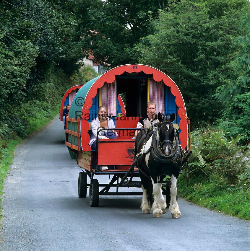 Ireland, County Kerry, near Tralee: Horse drawn Gypsy caravan with holiday makers | Irland, County Kerry, bei Tralee: im Urlaub mit dem Planwagen durch Irland