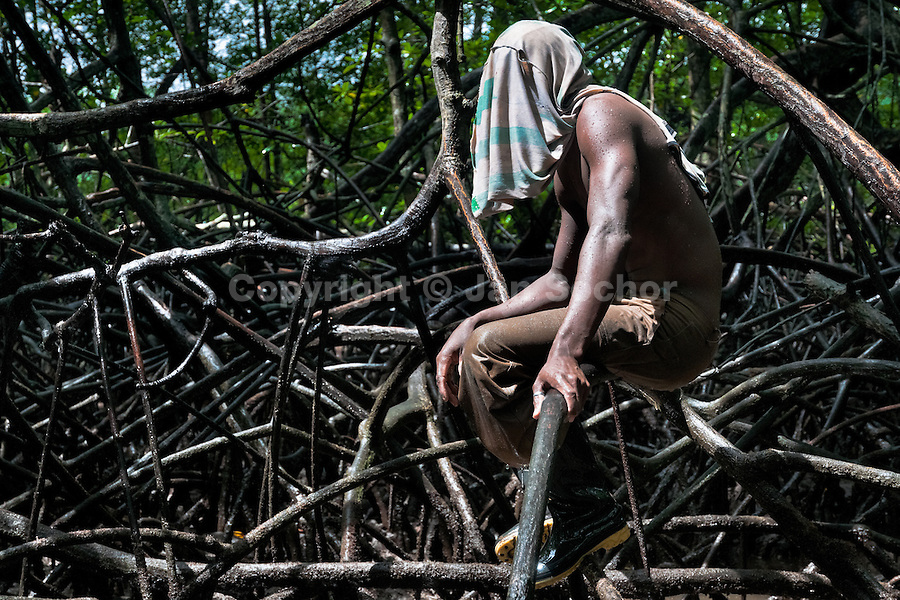 A Colombian boy sits on a mangrove tree root while searching for shellfish in the mangrove swamps on the Pacific coast, Colombia, 12 June 2010. Deep in the impenetrable labyrinth of mangrove swamps on the Pacific seashore, hundreds of people struggle everyday, searching and gathering a tiny shellfish called 'piangua'. Wading through sticky mud among the mangrove tree roots, facing the clouds of mosquitos, they pick up mussels hidden deep in mud, no matter of unbearable tropical heat or strong rain. Although the shellfish pickers, mostly Afro-Colombians displaced by the Colombian armed conflict, take a high risk (malaria, poisonous bites,...), their salary is very low and keeps them living in extreme poverty.